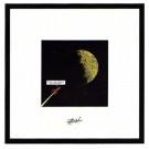 Tim und Struppi Lithographie Rakete fliegt zum Mond