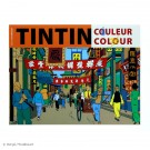 Tim und Struppi Tintin Malbuch orange