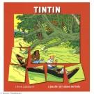 Tim und Struppi Buch mit Holzwürfel-Puzzle (Livre Cubes)