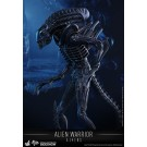 Aliens Alien Warrior Hot Toys