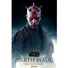 Star Wars Darth Maul Duel on Naboo