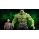 Bruce Banner & Hulk The Avengers Hot Toys